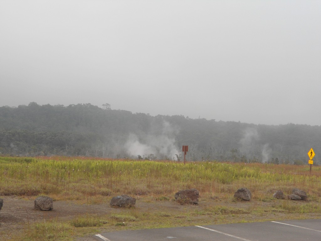 Steam vents near the road in Volcano National Park